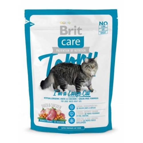 BRIT CARE CAT TOBBY I'M A...